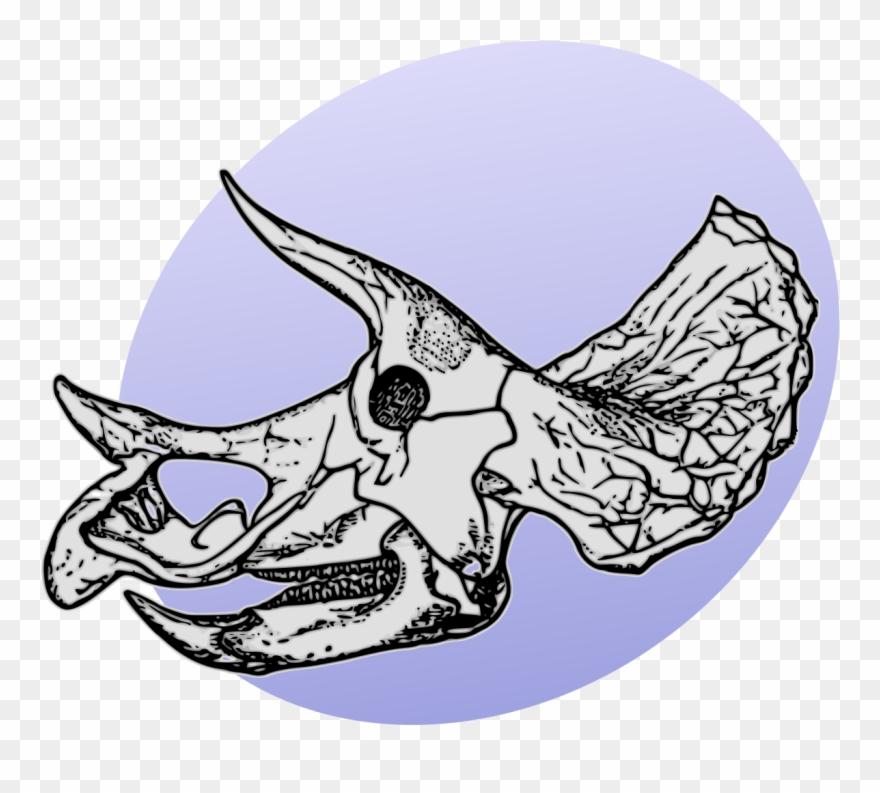 triceratops # 5342090
