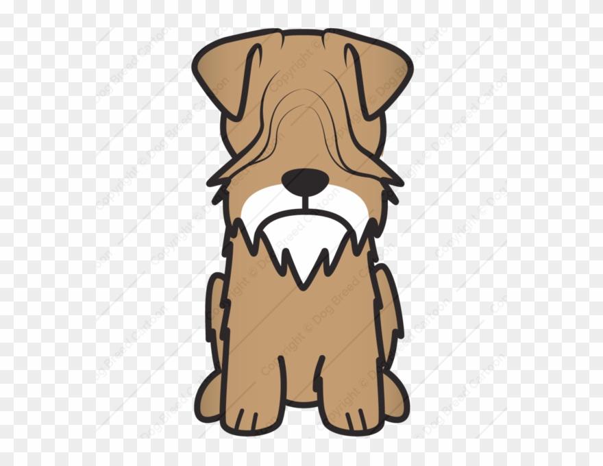 yorkshire-terrier # 5269202