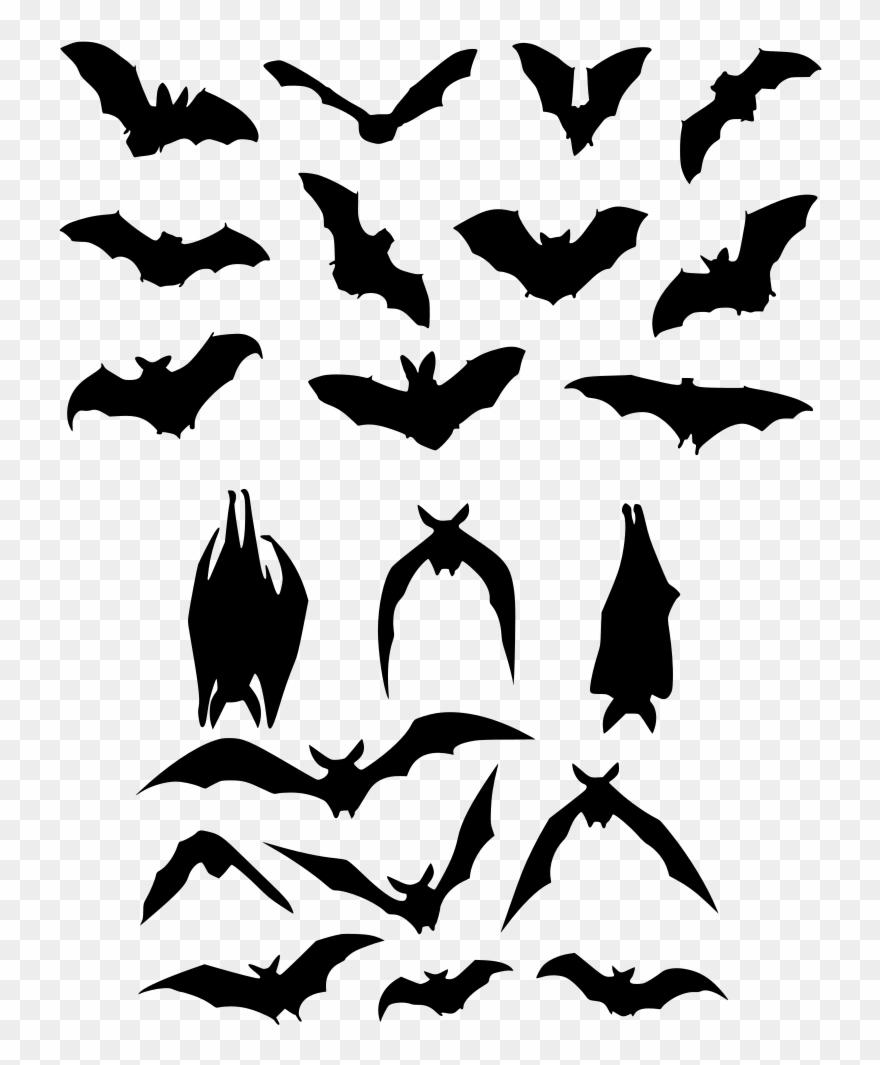 bat # 4890974