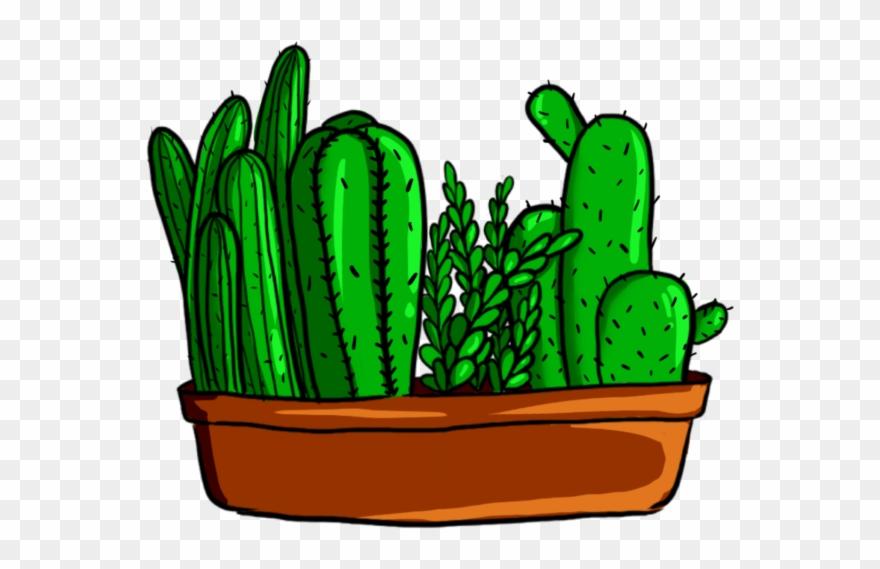 cactus # 4932889