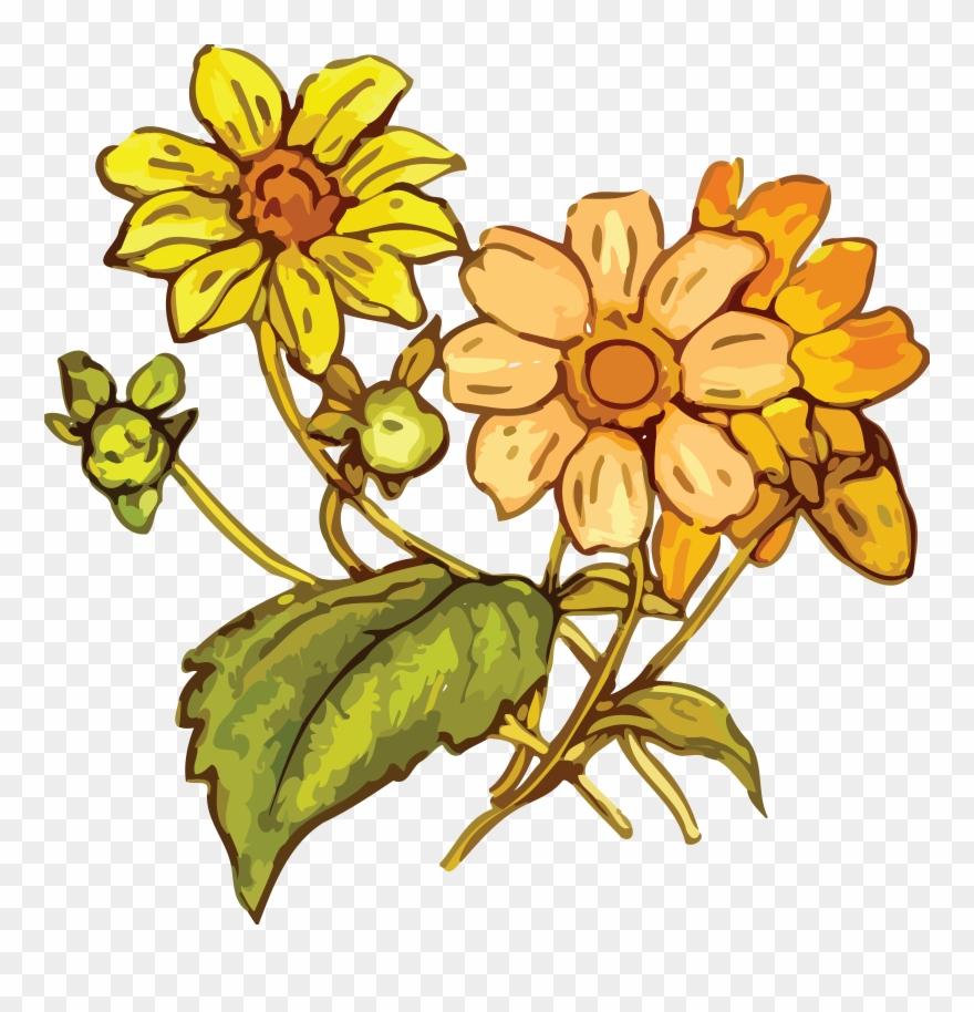 flowering-plant # 4908609