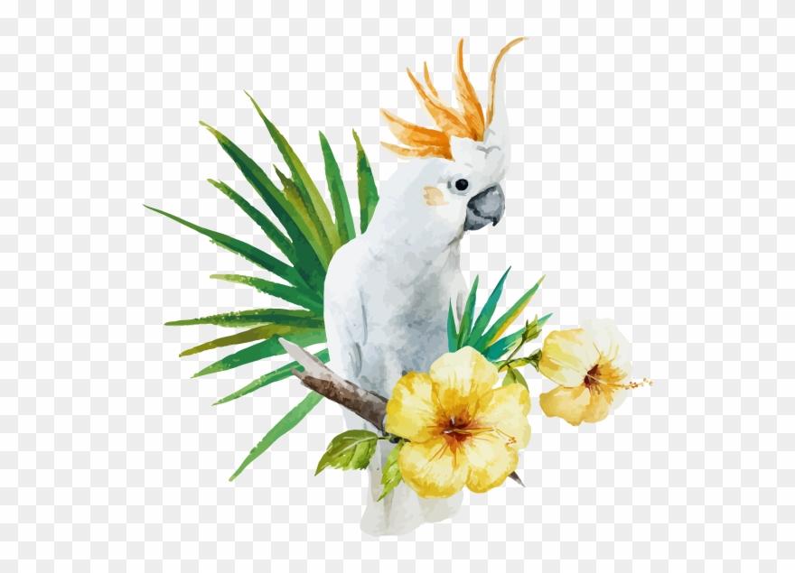 parrot # 4936324