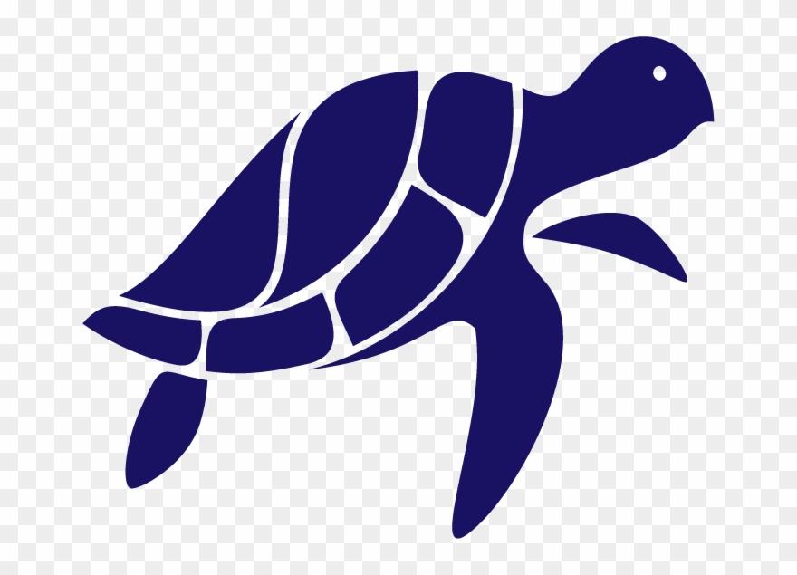 turtle # 4936078