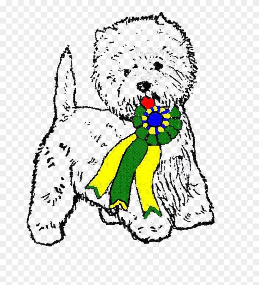 yorkshire-terrier # 4938409
