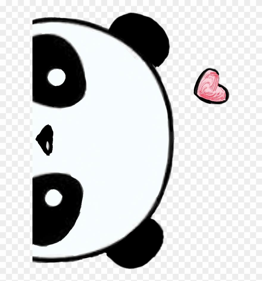 red-panda # 4938106