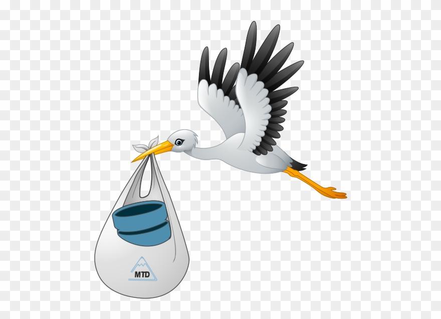 stork # 4937247