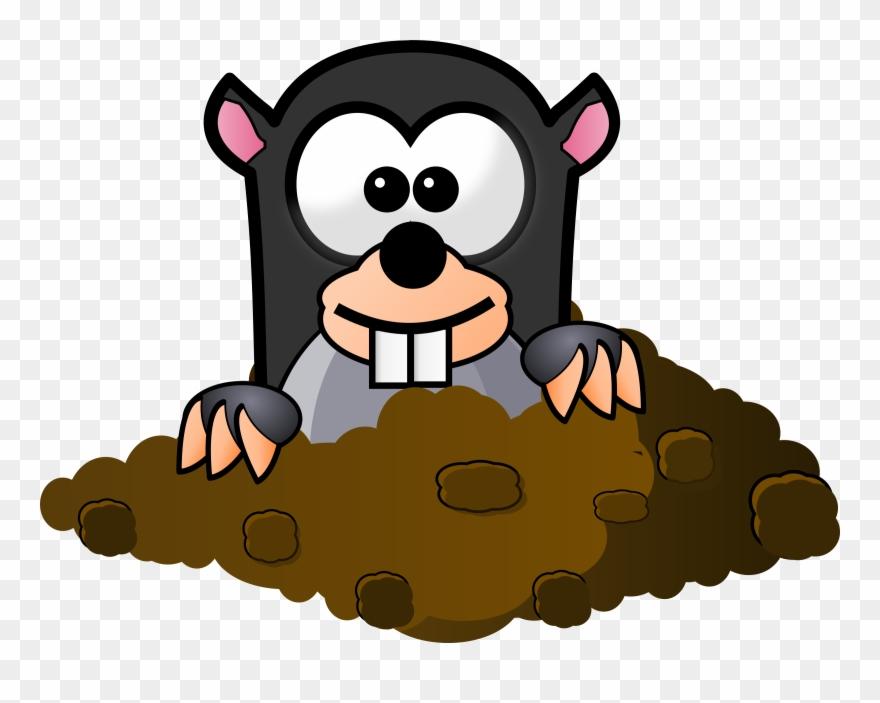mole # 5056262