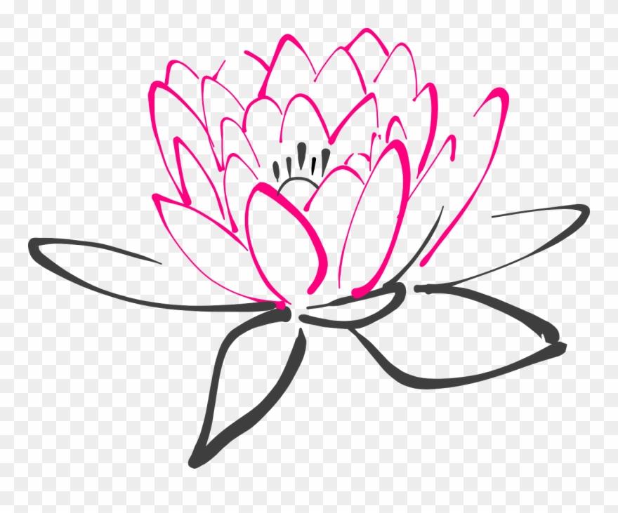 lotus # 5053084