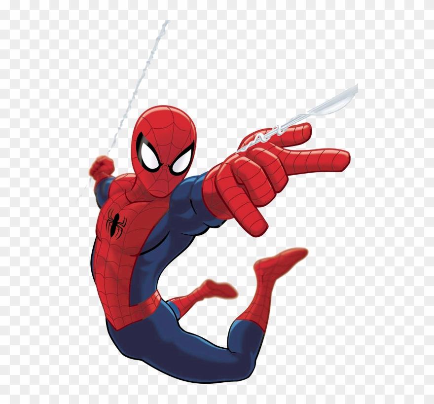 spider # 5236579