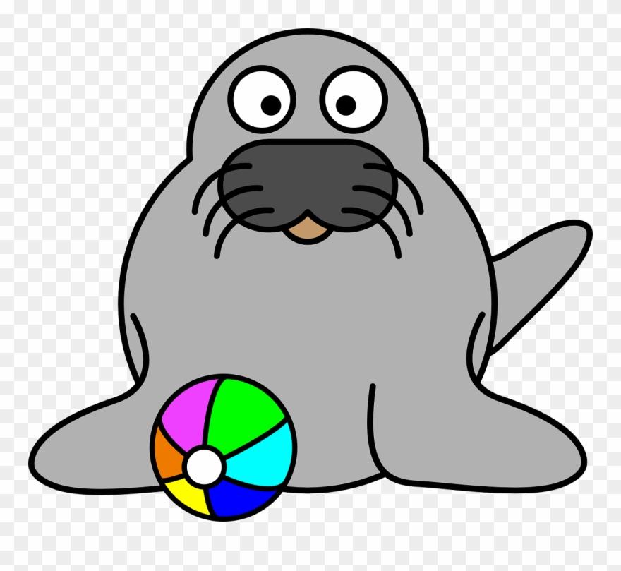 harbor-seal # 4892993