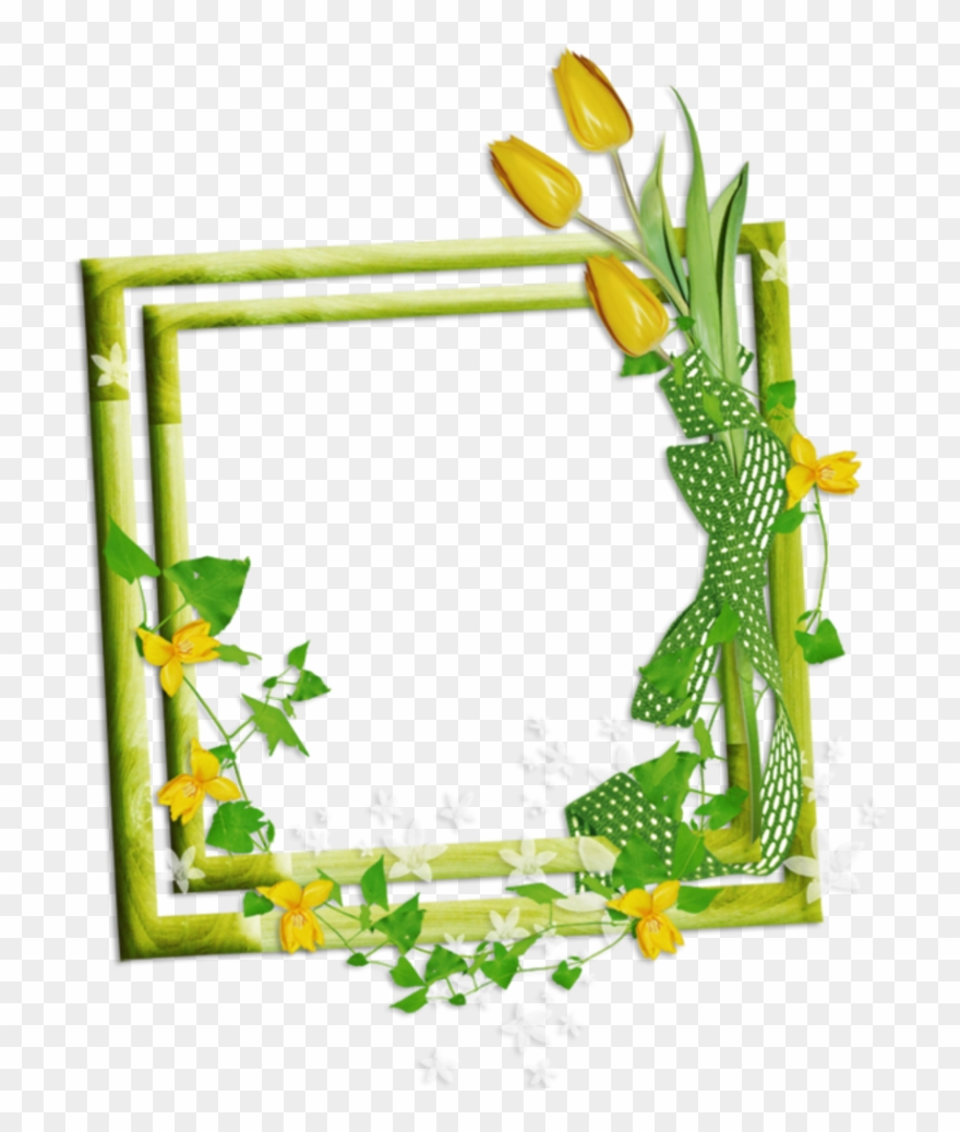 picture-frame # 4894461