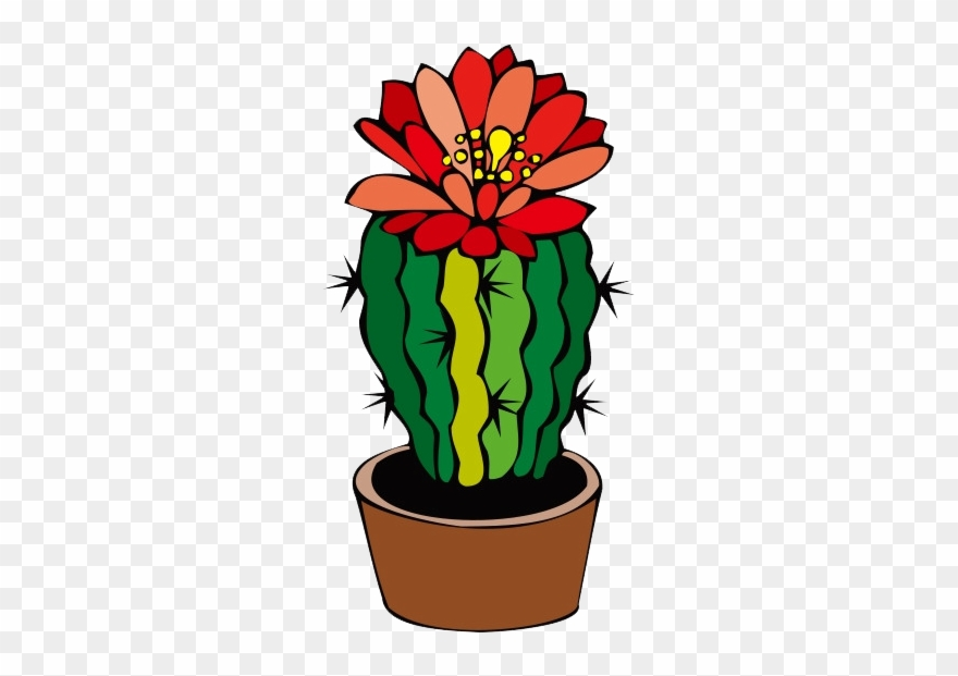 cactus # 4937630