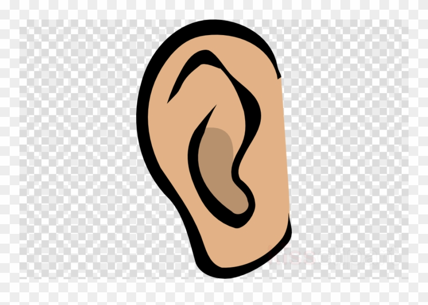 ear # 4905511