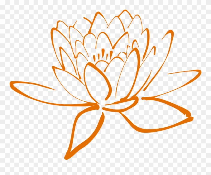 lotus # 4902382