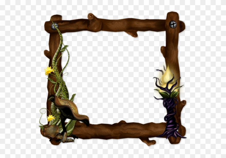 picture-frame # 4907015