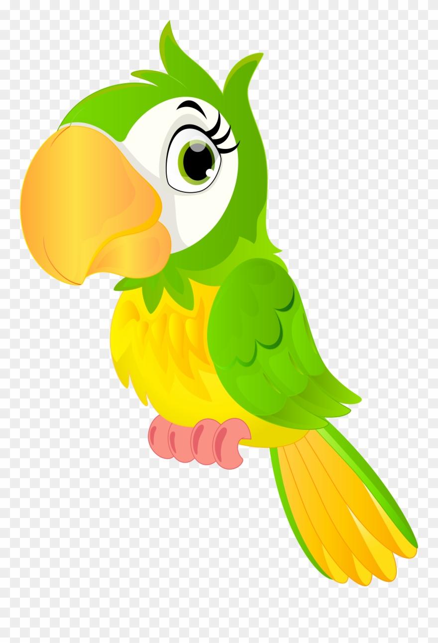 parrot # 4906289