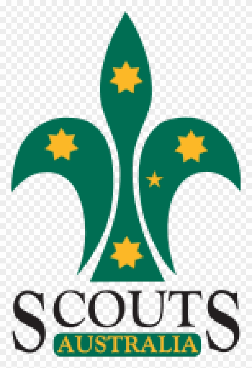 scout # 4926611