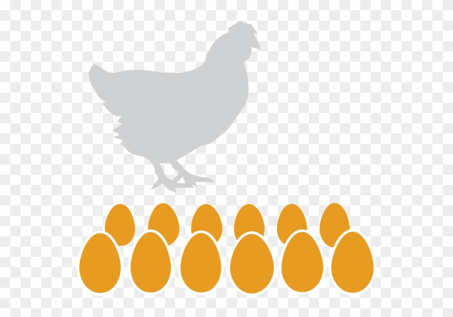 scrambled-eggs # 4930717