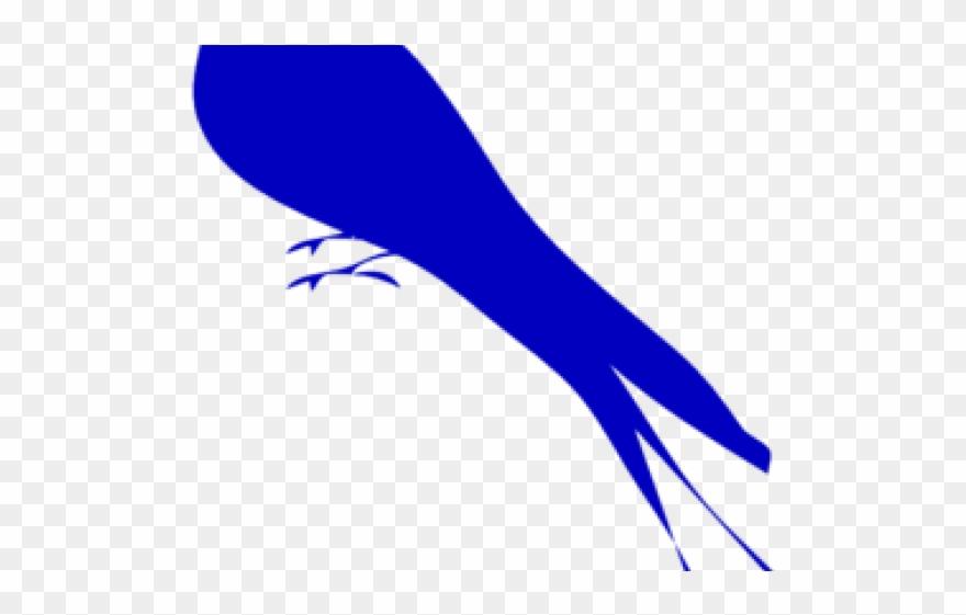 eastern-bluebird # 4947598