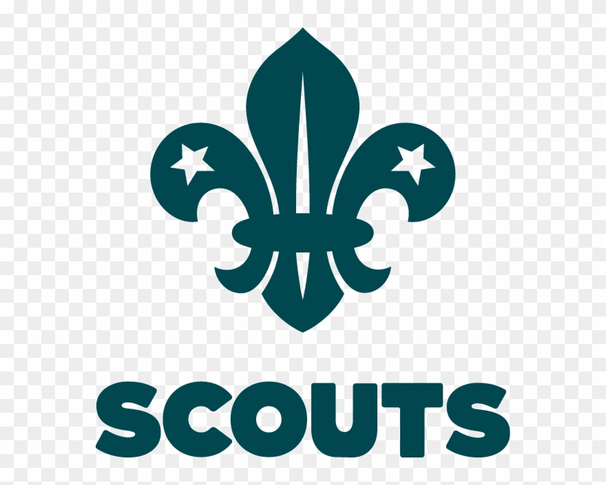 scout # 4949444