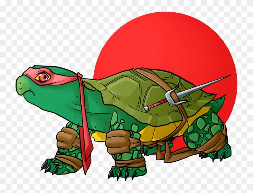 turtle # 4947237