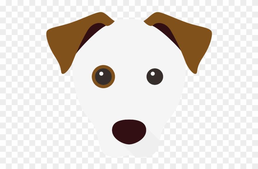yorkshire-terrier # 4924716