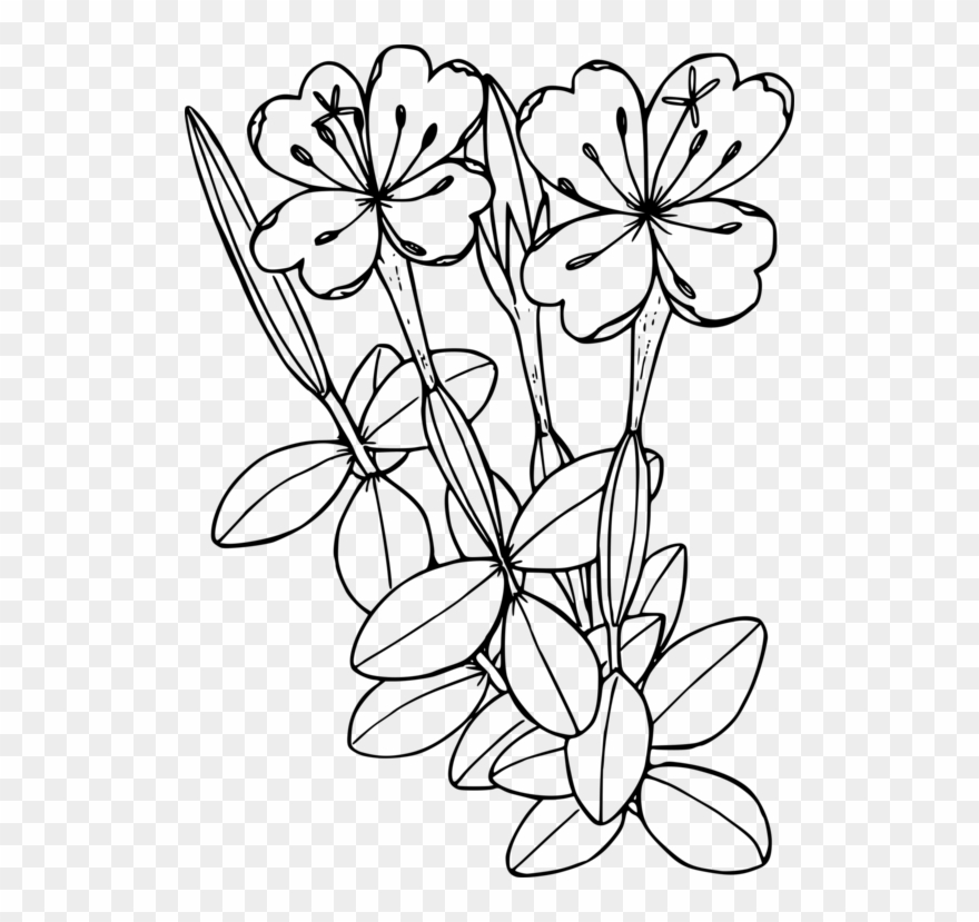 flowering-plant # 4884577