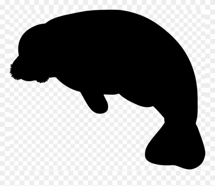 indian-elephant # 5244470