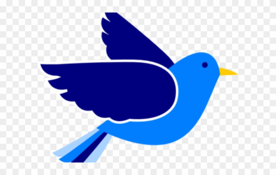 eastern-bluebird # 5312113