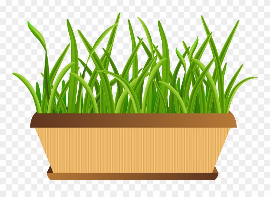 flowerpot # 5290637