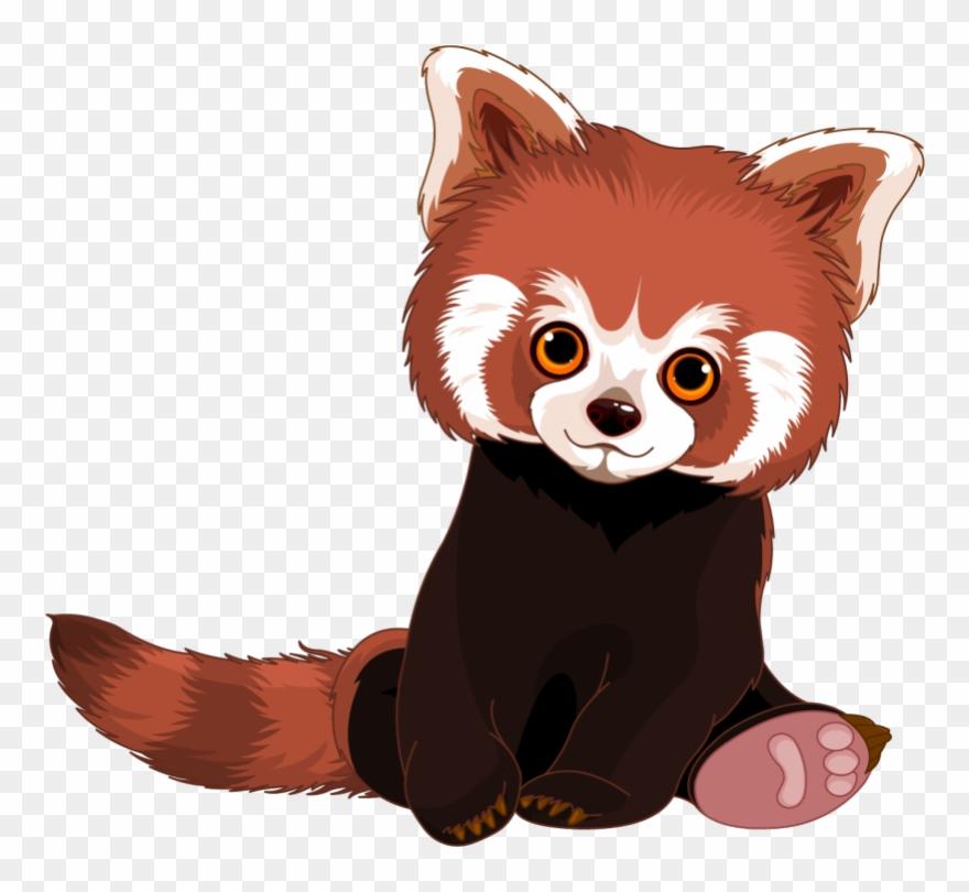 red-panda # 5273451
