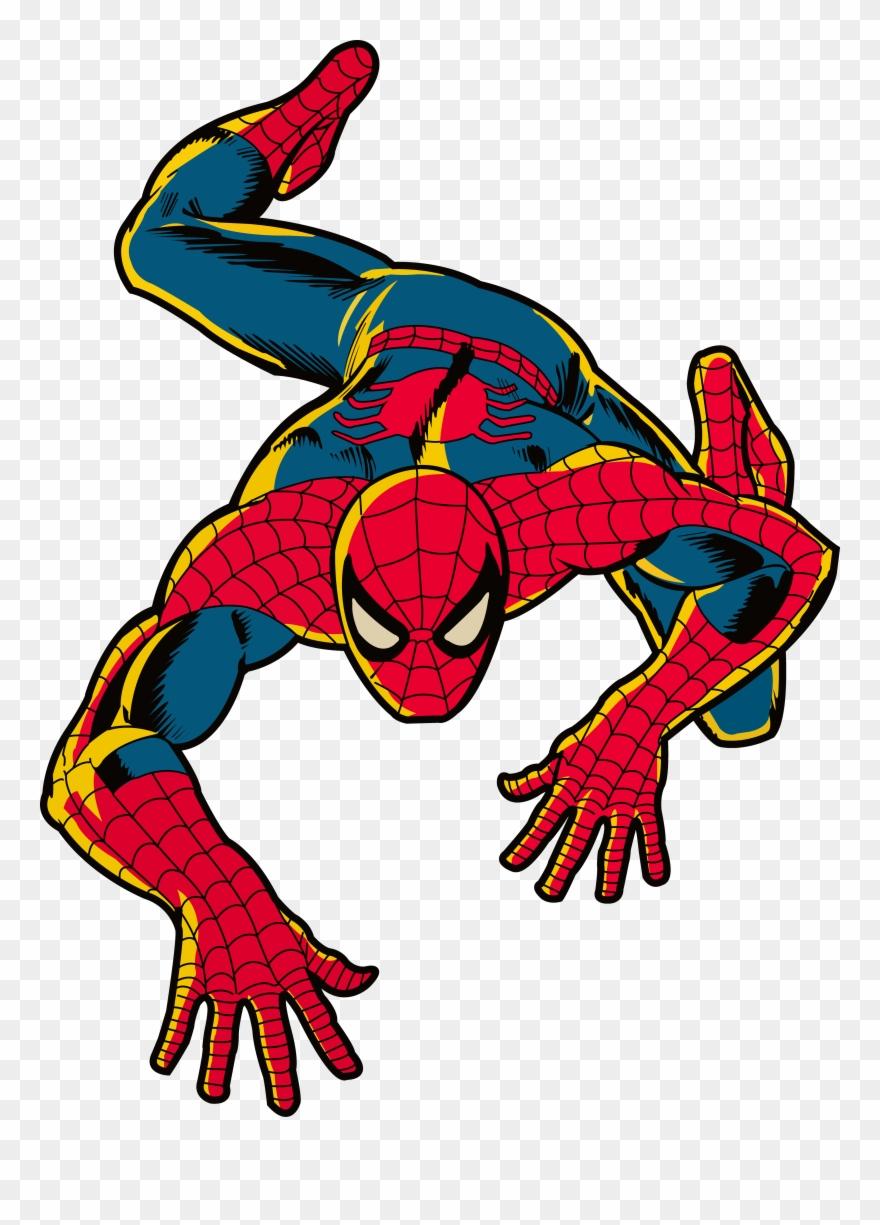spider # 4875842