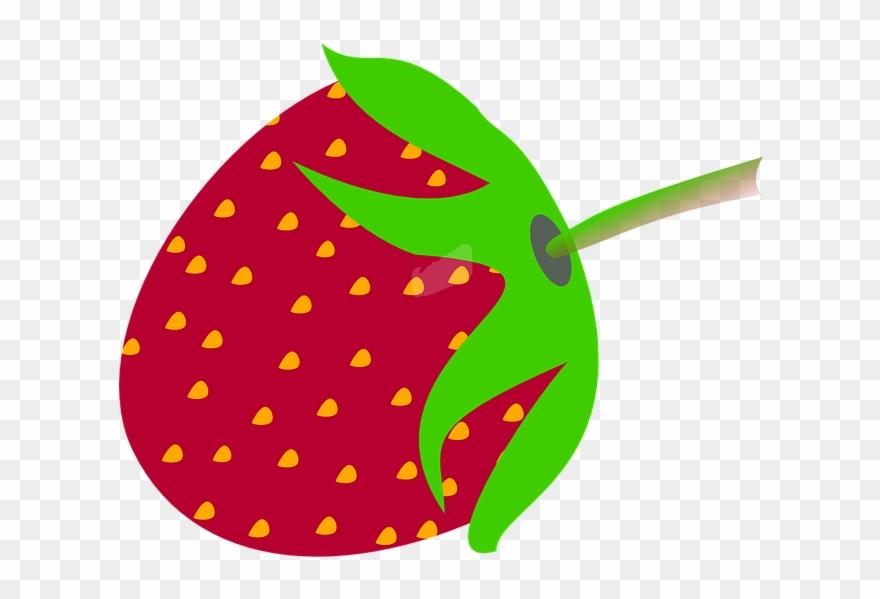 berry # 4875890