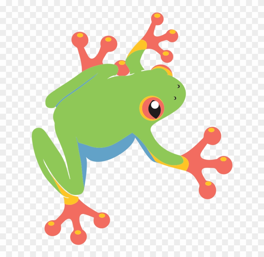 frog # 4871531