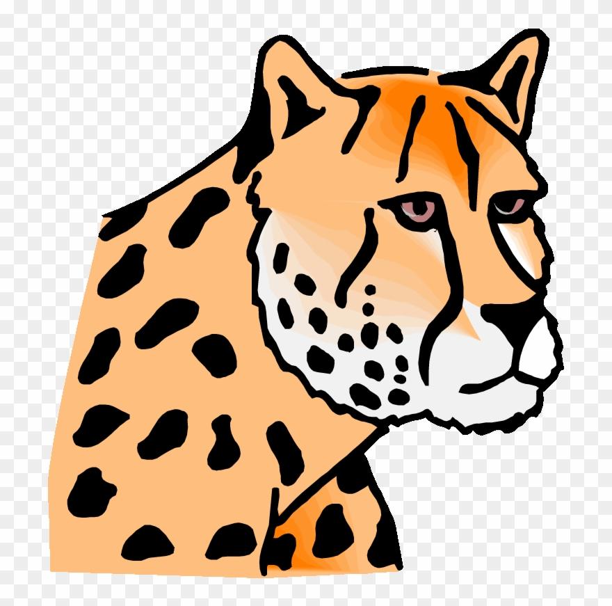 leopard # 4873725