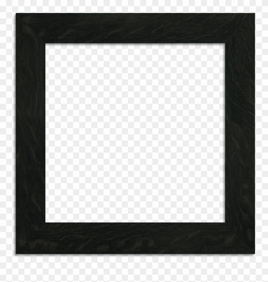 picture-frame # 4894169