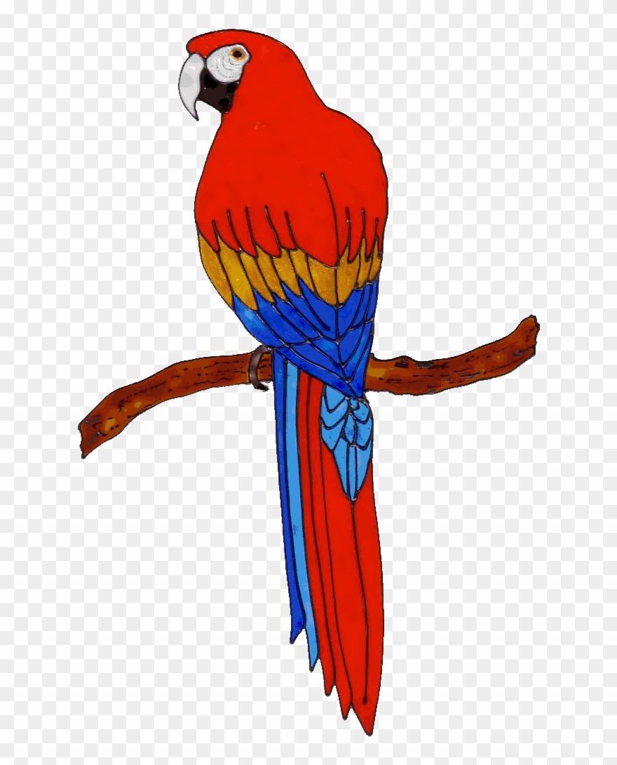 parrot # 4894928