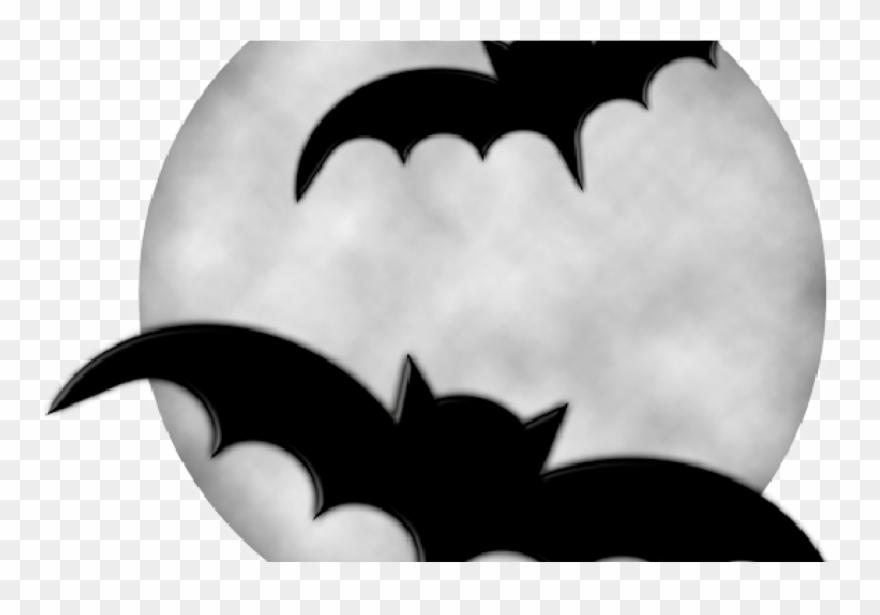 bat # 4867860