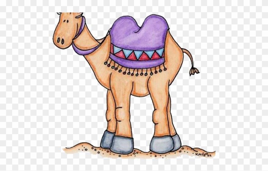 camel # 4867438