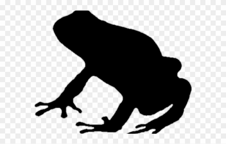 frog # 4866953