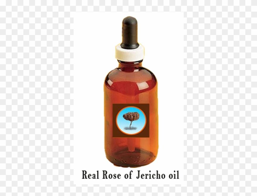 oil # 4868200