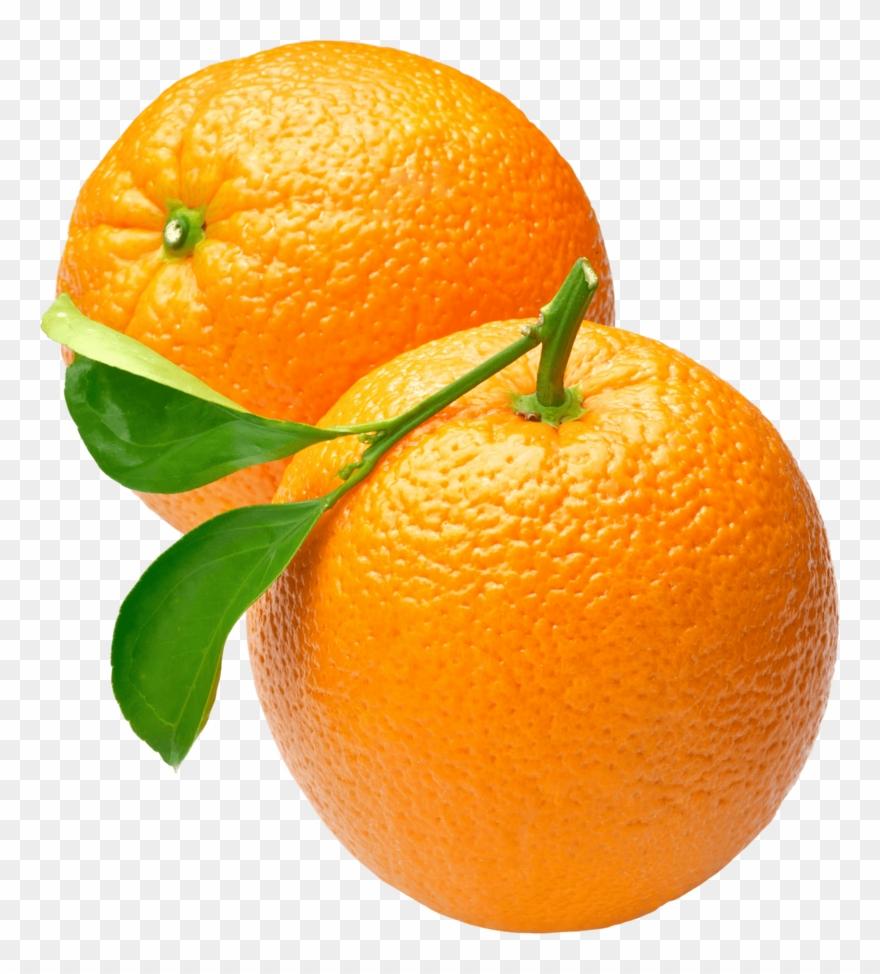 orange # 4885366