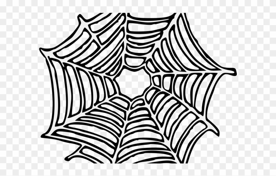 spider # 4885026