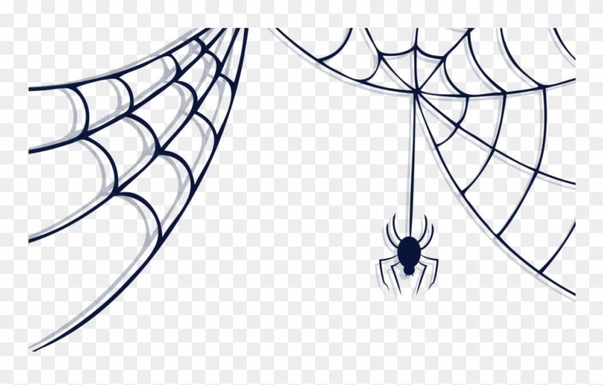 spider # 4885042