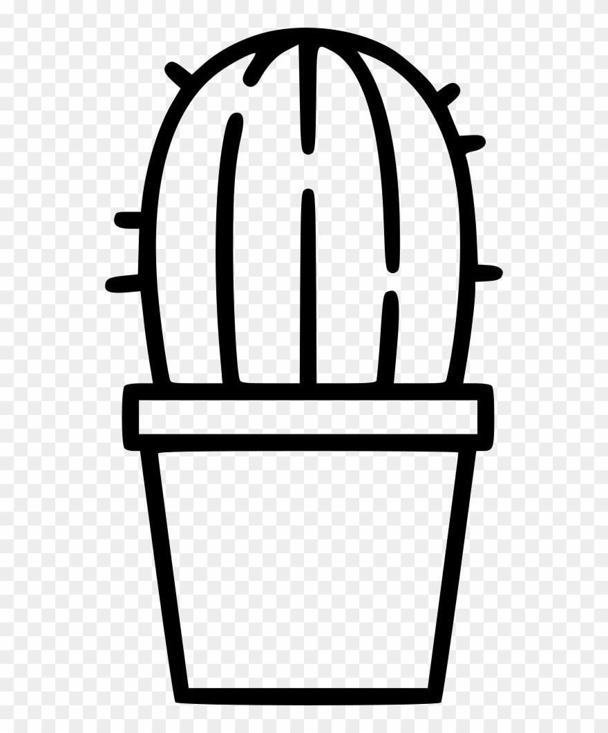 cactus # 4901484