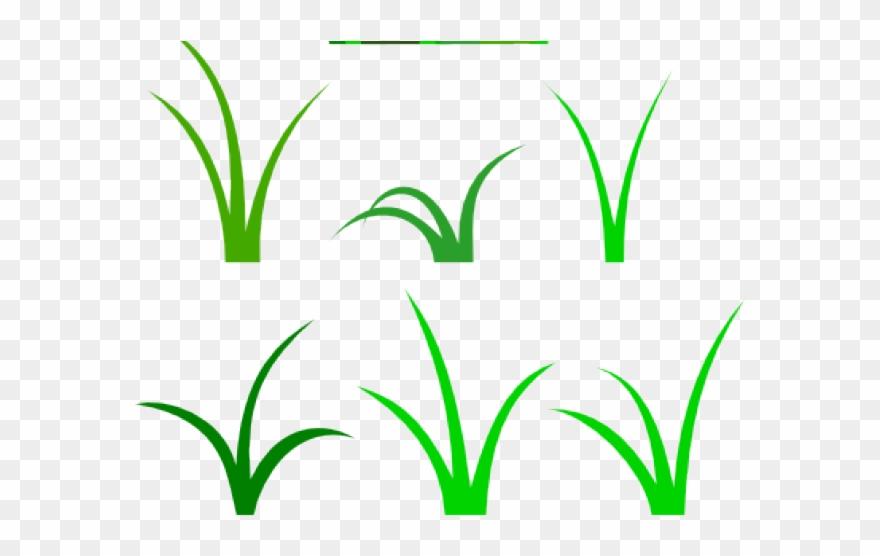 grass # 4878668