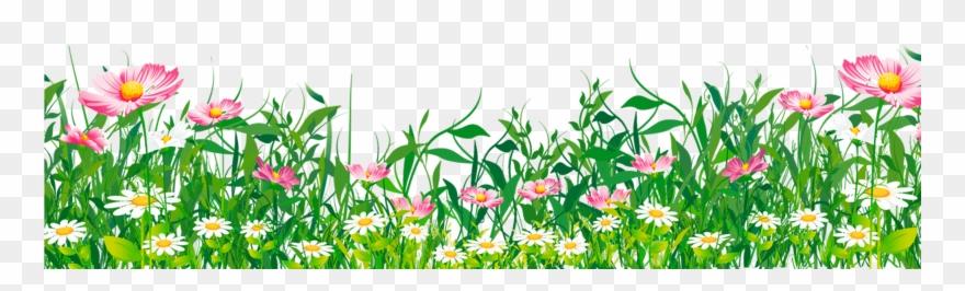 grass # 4878660