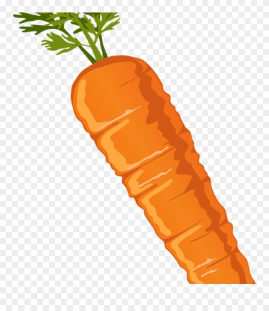 carrot # 4878066