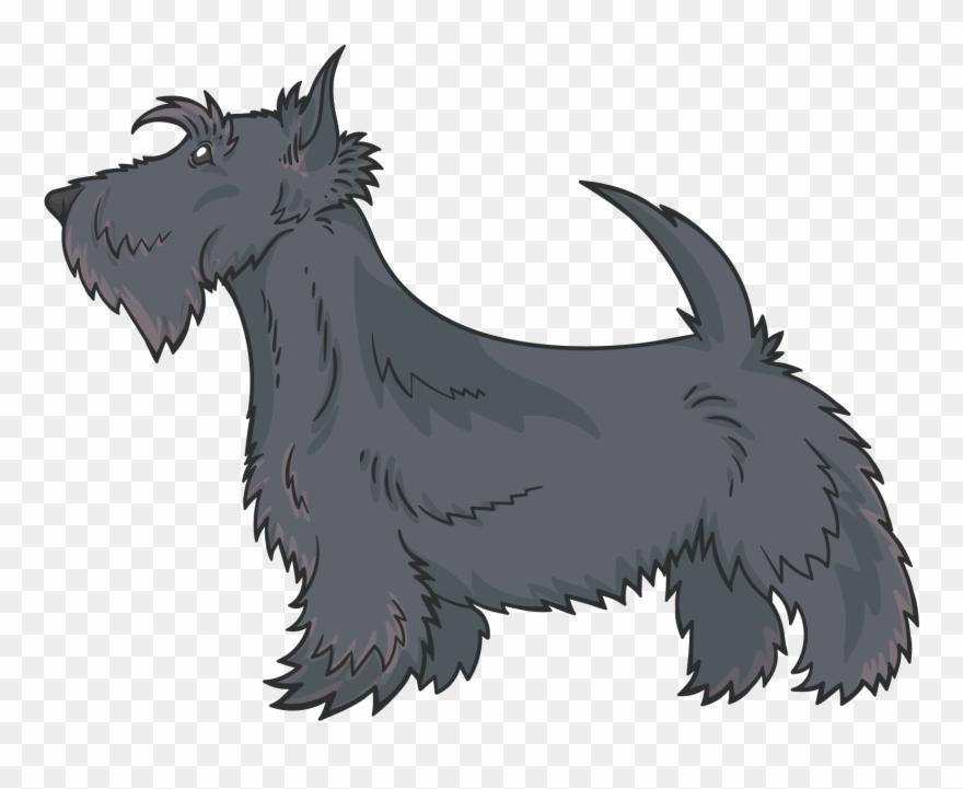 yorkshire-terrier # 4880679