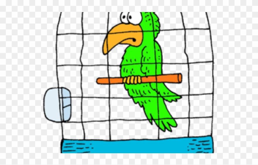 parrot # 4879424